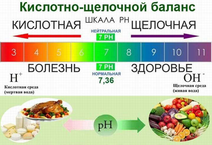 Особенности питания при экземе