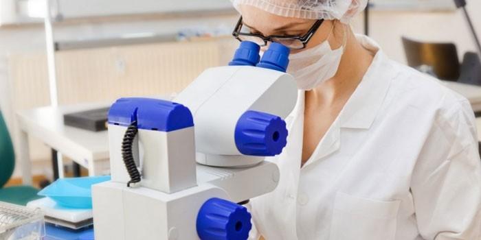 Микроскопирование